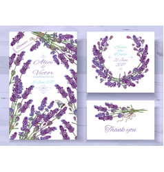 lavender invitations set vector image
