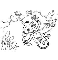 monkey cartoon coloring pages vector image