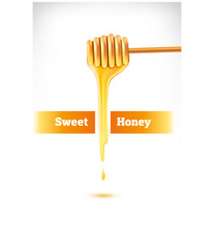 Honey dripping from a wooden dipper vector
