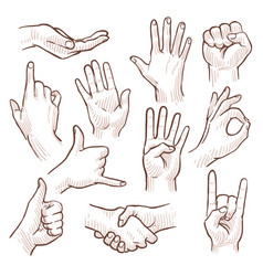 Line drawing doodle hands showing common signs vector