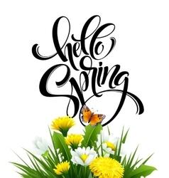 Inscription hello spring hand lettering on vector