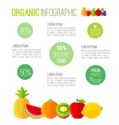 Organic infographic fresh fruits vector