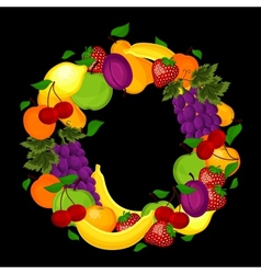Healthy lifestyle-fruit circle vector image vector image