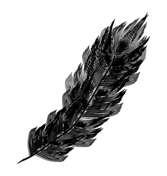 Black feather icon vector