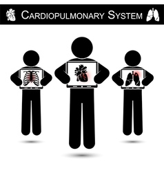 Cardiopulmonary System vector image vector image