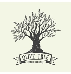 Hand-drawn graphic logo with olive tree vector image vector image