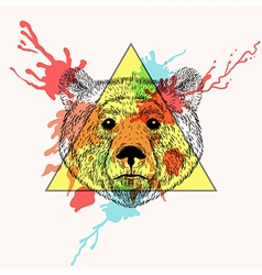 Bear face in triangle frame with watercolor ink vector