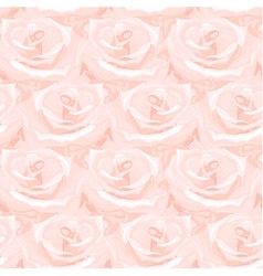 Seamless pattern from roses vector image vector image