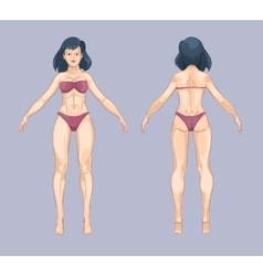 Woman or female body in cartoon style Front and vector image vector image