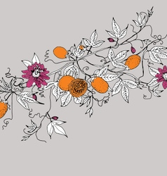 Passion fruit and flowers on gray background vector