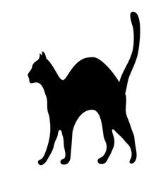 Silhouette afraid cat vector