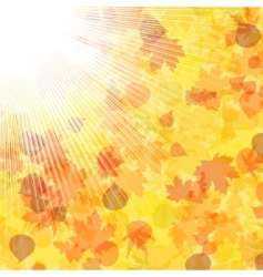 Autumnal leaf vector