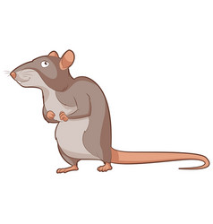 cartoon smiling rat vector image vector image