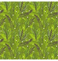 Botanical seamless pattern with french vector