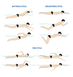 swimming breaststroke butterfly and free style vector image