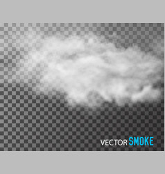smoke on transparent background vector image