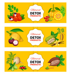 Superfood banner template vector