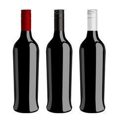 Three bottles of wine vector