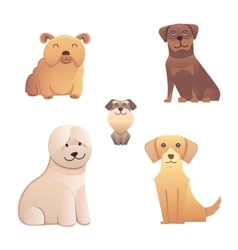 Collection cute different type of dogs small and vector