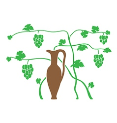 Green grape and brown jug vector