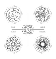 Flower bundle in minimalistic mono line style vector