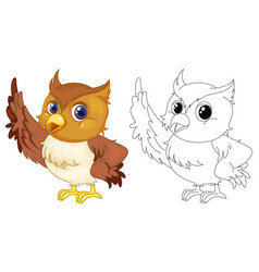 animal outline for cute owl vector image vector image