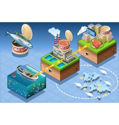 Isometric infographic tuna distribution chain vector