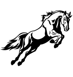 Jumping horse vector