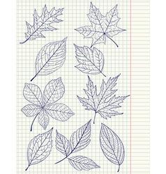 SchoolLeavesVS vector image vector image
