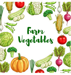 Vegetables poster for organic farm food design vector