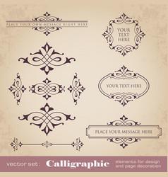Calligraphic elements for design vector