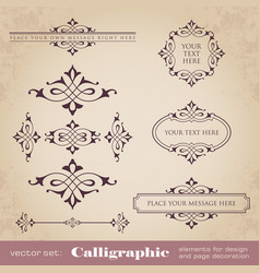 calligraphic elements for design vector image vector image