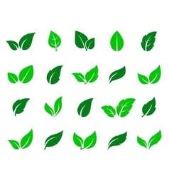 green leaf icons set vector image vector image