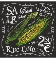 ripe corn logo design template fresh food vector image vector image