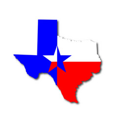 texan background vector image