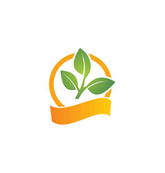 Green leaf organic logo vector