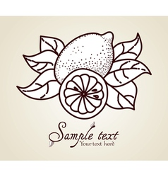 Hand-drawn fruit icon vector image vector image