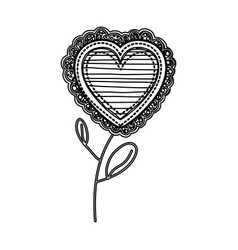 Silhouette heart flower shape with lines pattern vector