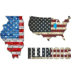 Usa state of illinois on a brick wall vector