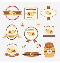 Apricot set of label design vector
