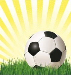 football soccer ball vector image vector image