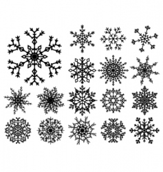 snowflakes vector image vector image
