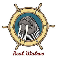 The walrus vector