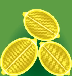three fresh lemon in a longitudinal section on a vector image vector image