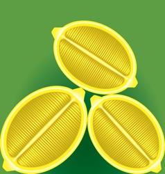 Three fresh lemon in a longitudinal section on a vector