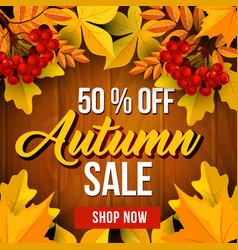 Autumn sale poster of fall season discount price vector