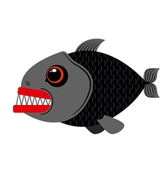 Piranha marine predator on white vector