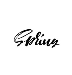 handwritten lettering spring hand drawn vector image vector image