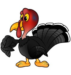 Black turkey vector