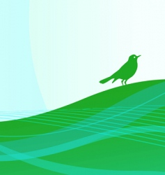 Song bird vector